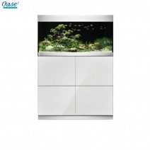 Oasis Features a 200-white