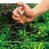 ADA AP Food Glass