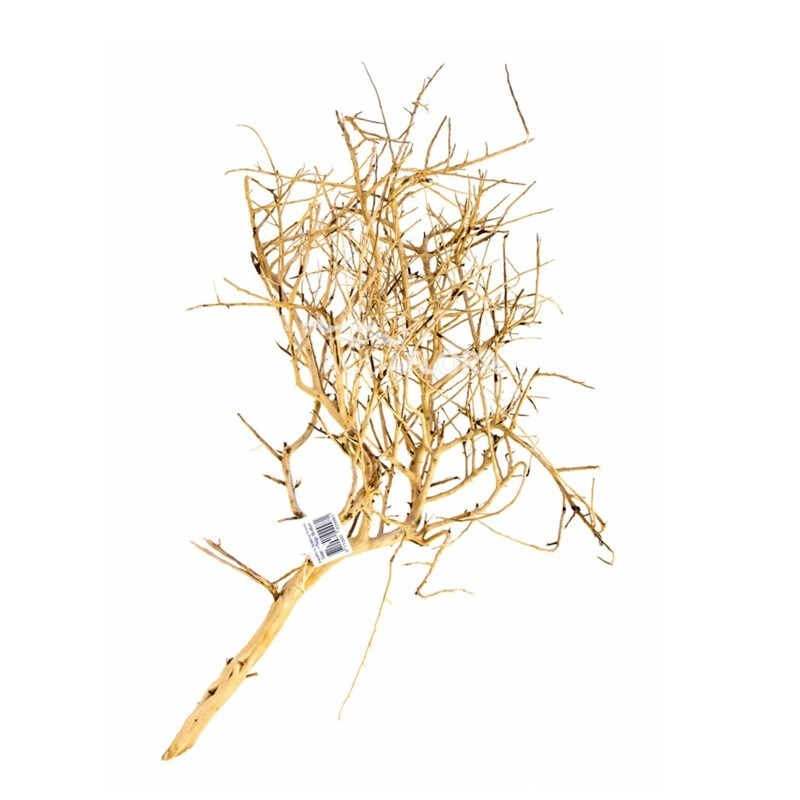 Scaping Twigs of 30-45cm