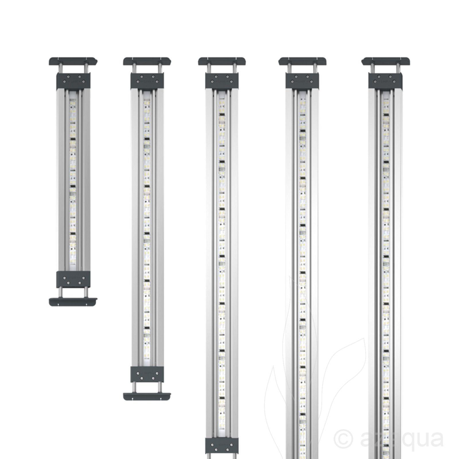 Oase HighLine Premium LED