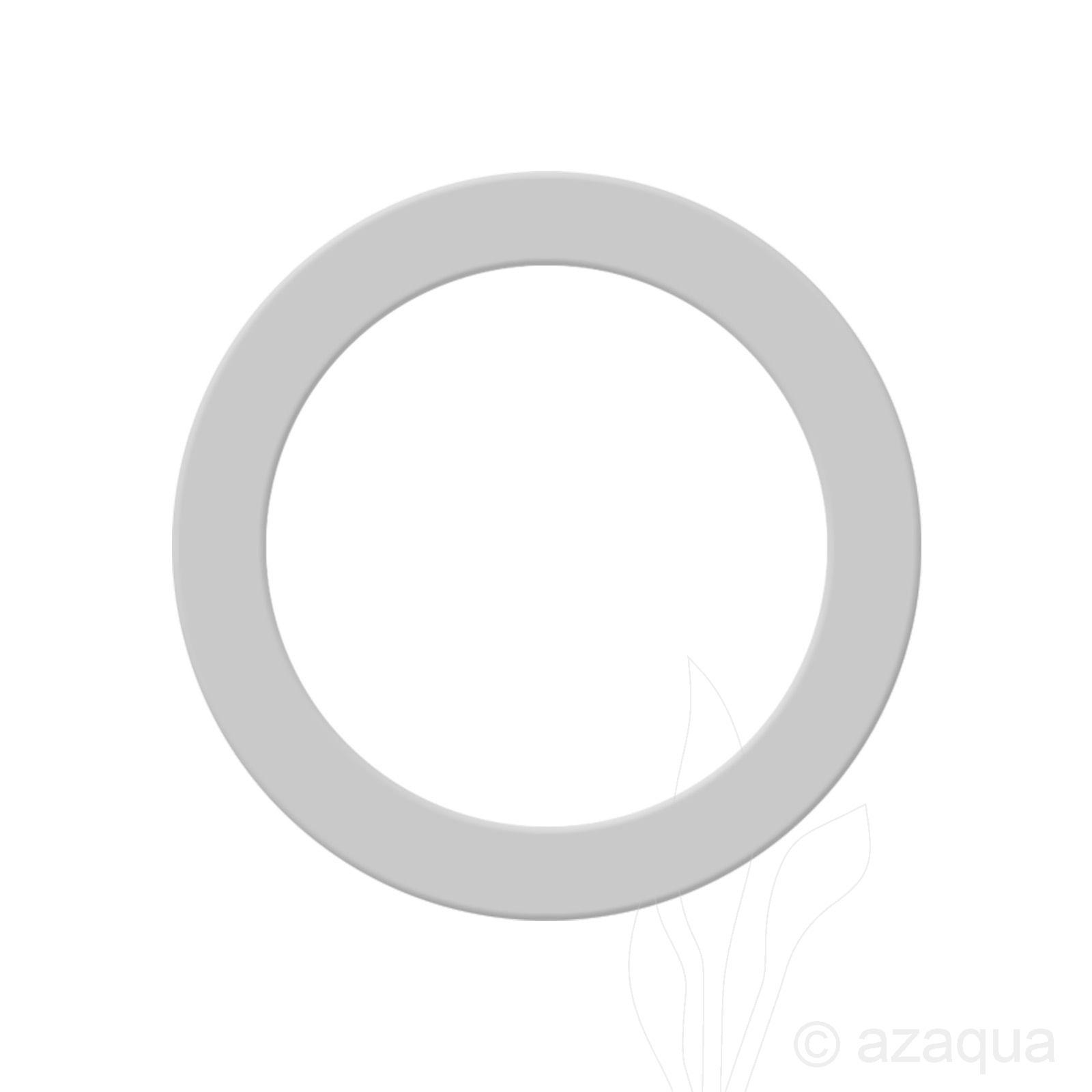 Sealing ring for CO2 regulator
