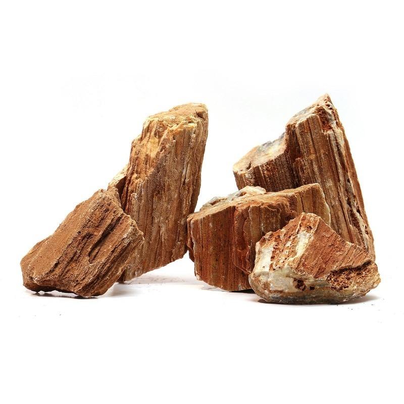 Versteend hout
