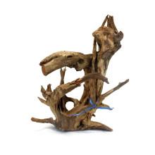 Corbo Root L (40-60cm)