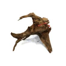 Corbo Root M (30-40cm)