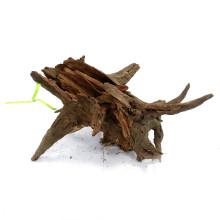 Corbo Root S (20-30cm)