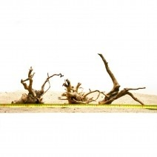 Spiderwood / Redmoor Wood's (21-30cm) wood for the aquarium