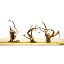 Spiderwood S (21-30cm) - hout voor het aquarium