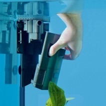 Oase BioPlus 50
