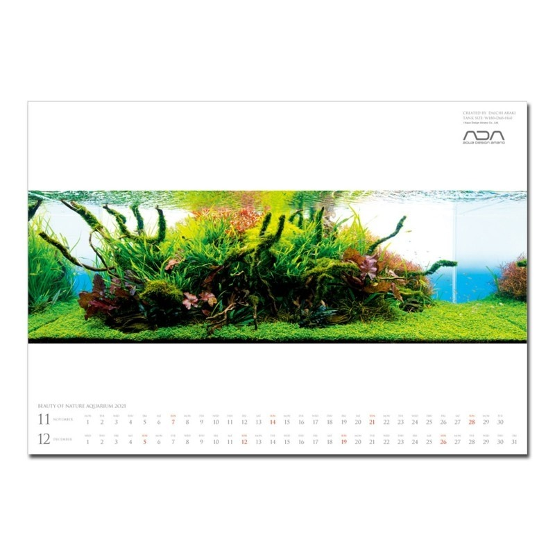 NA - Calendar 2021