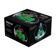 Aqualighter Wabi Set