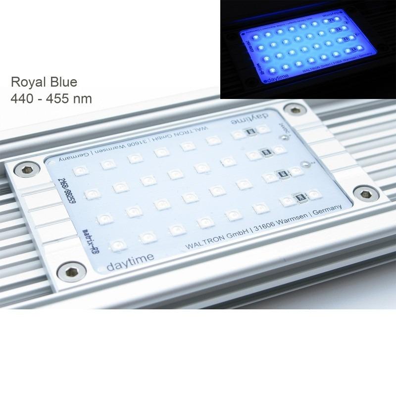 Daytime Matrix Module Royal Blue