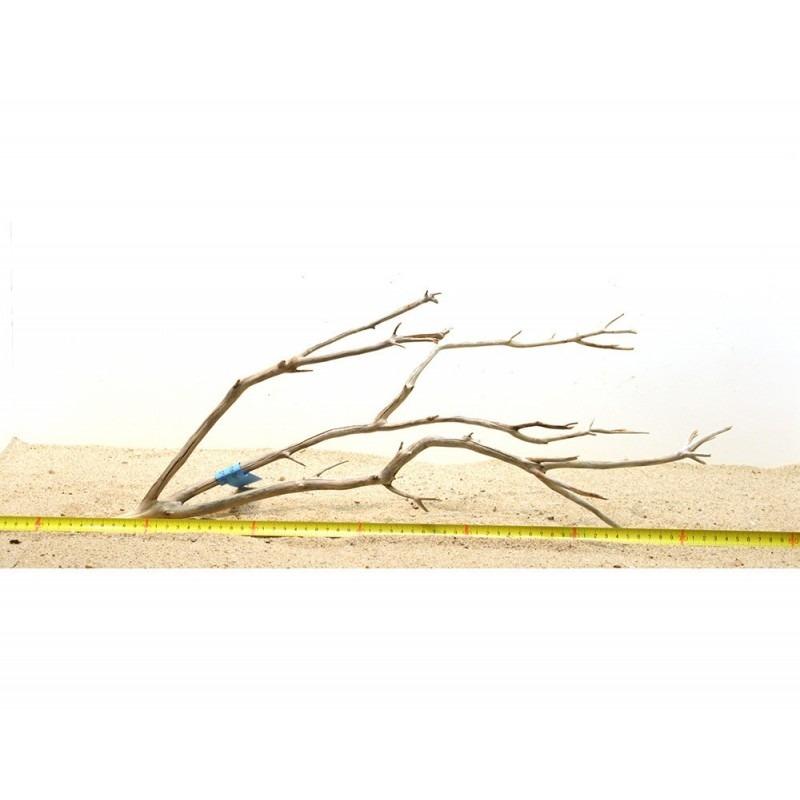 Manzanita hout L (50-60cm) - Manzanita Wood voor het aquarium