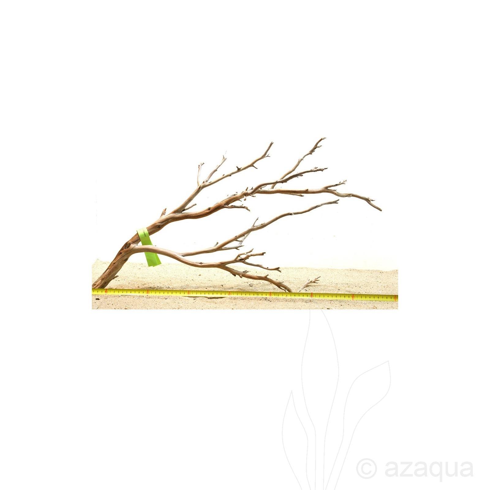 Manzanita hout XL (60-75cm) - Manzanita Wood voor het aquarium