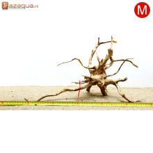 Spiderwood M (35-50cm)