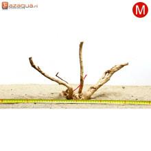 Spiderwood M (31-40cm)