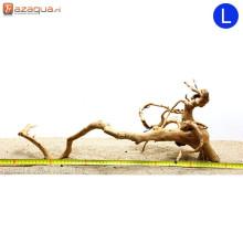 Spiderwood L (41-50cm) - decorative wood for the aquarium