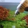 ADA Phyton Git - Preventie van ziektes bij aquariumplanten en tegen blauwe algen