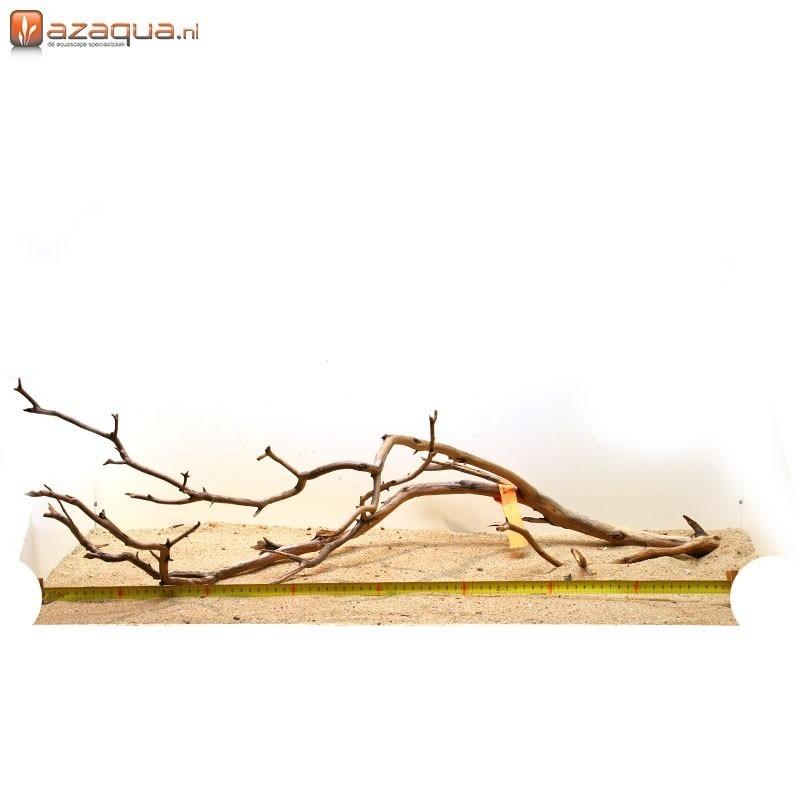 Manzanita hout XXL-01