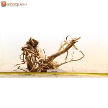 Spiderwood RM2231