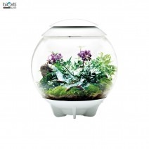 biOrb Air 60 white