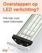 Overstappen op LED verlichting