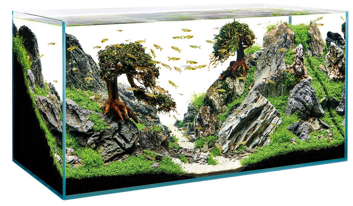 ScaperLine - The ideal framework for the art of aquascapen