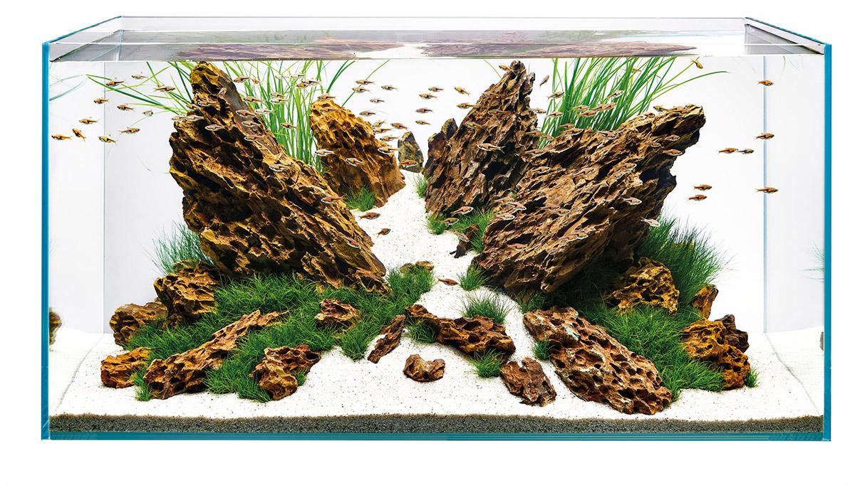 ScaperLine - Optiwhite glass aquarium