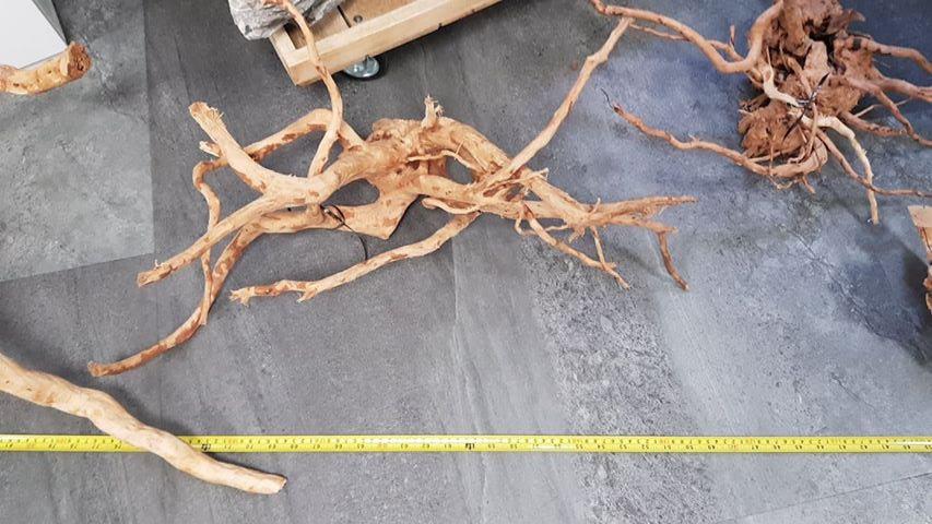 SpiderwoodXL-uitzoeken03