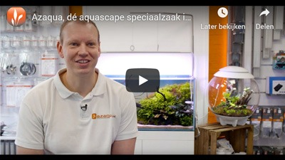 Azaqua aquascaping promovideo
