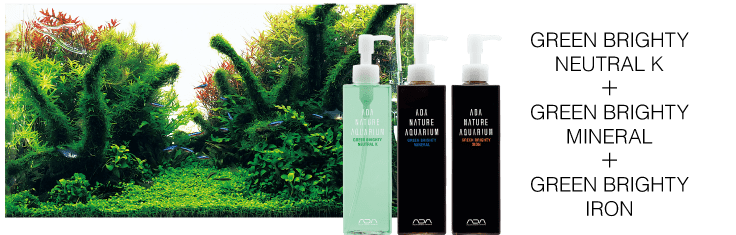 ADA Green Brighty Series B