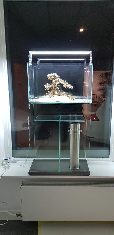 En het eerste aquarium in de etalage